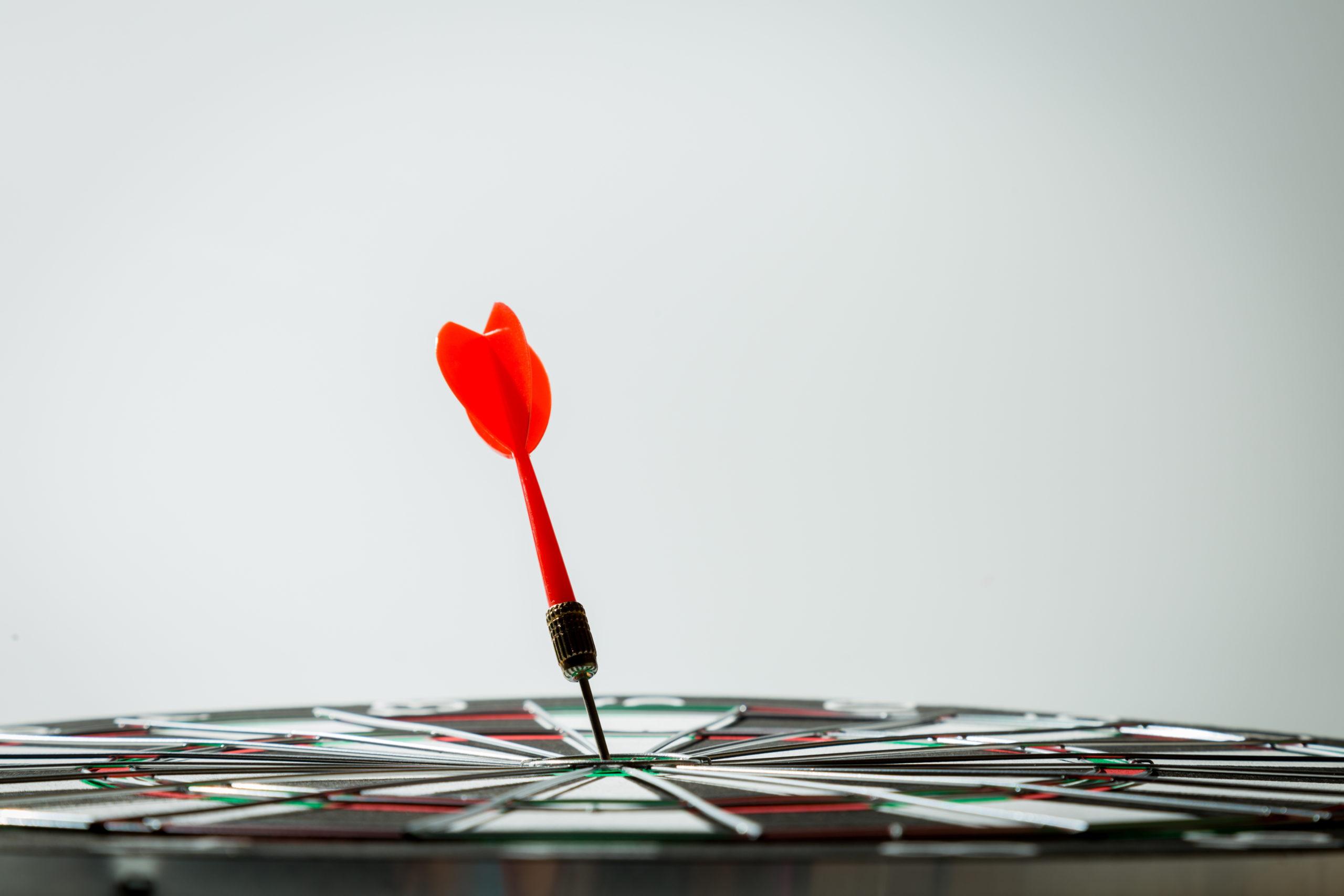 focus dartboard